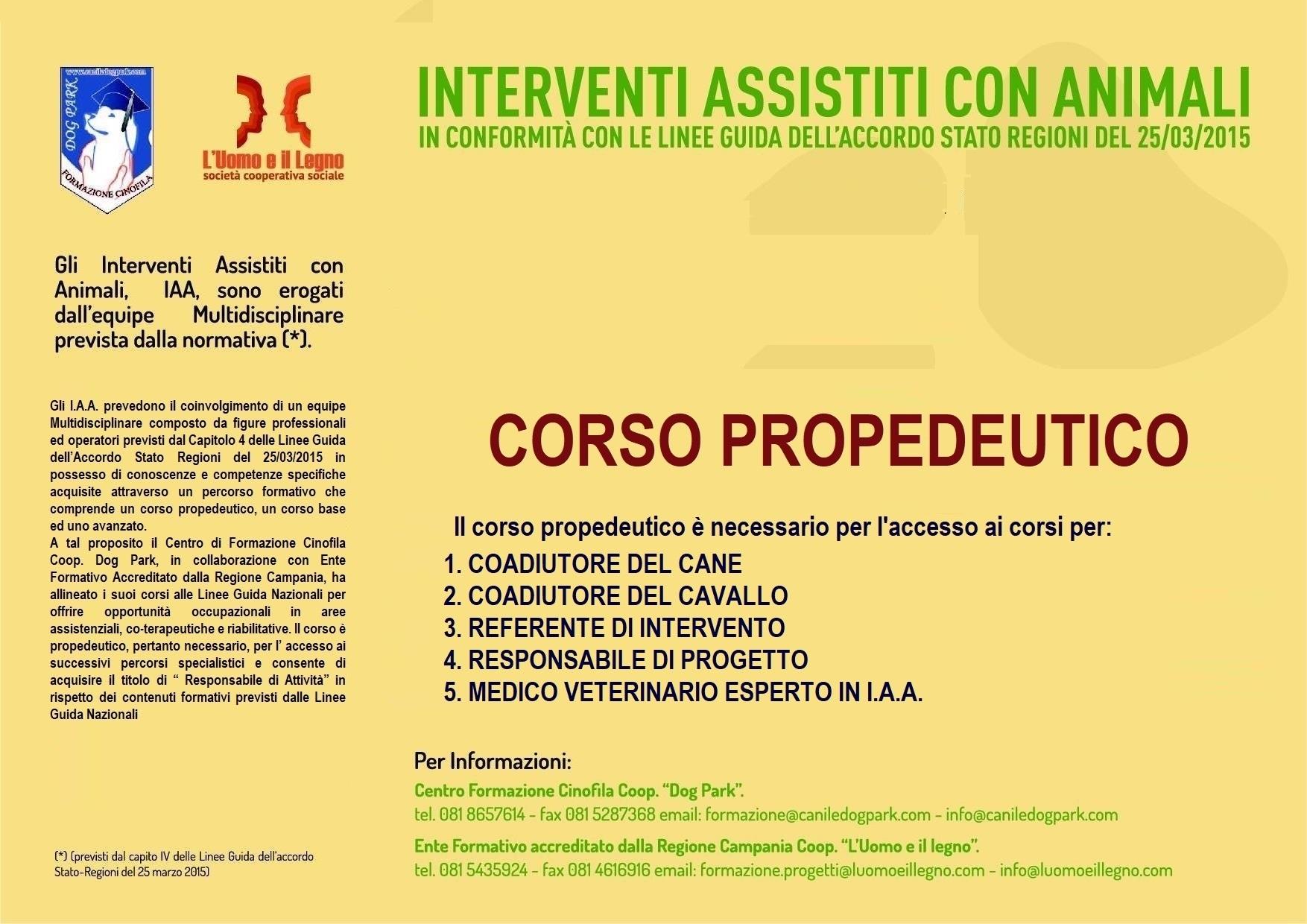 3° CORSO PROPEDEUTICO I.A.A.